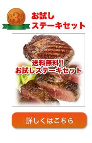 お試しステーキセット